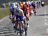 Tom Steels zag renners van Deceuninck-Quick.Step de koers maken