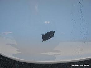 Photo: Lot 29 - (2372-4/7) - 1997 Ford Taurus - 77,091 miles