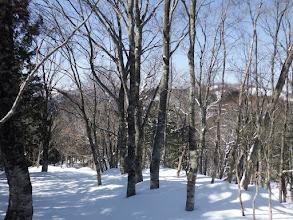 前方(右)に目指す山頂