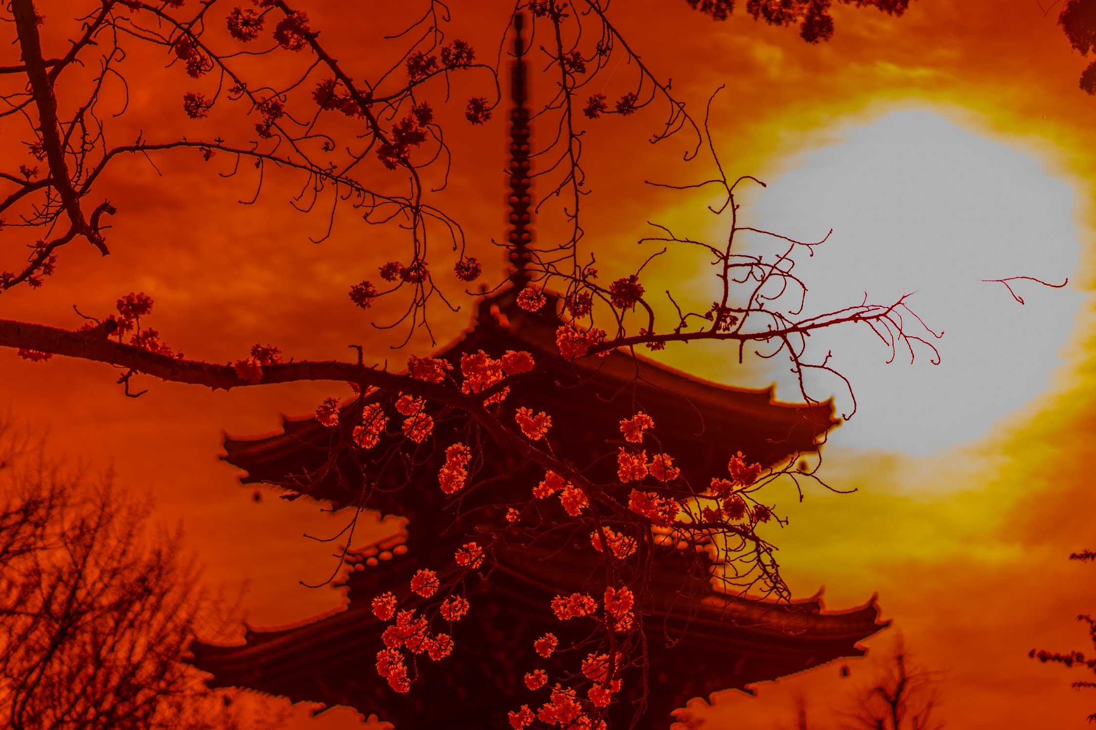 京都 真如堂 三重塔2