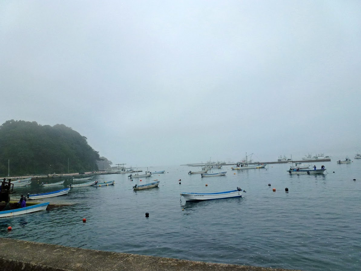 雨の日の泊浜漁港