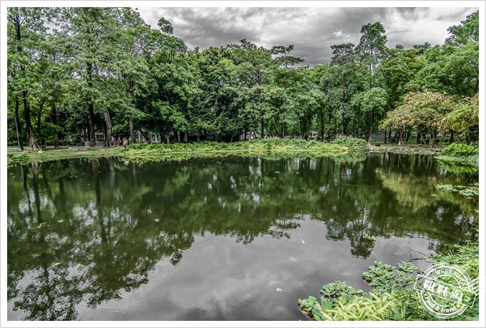 大東溼地公園禁止游泳