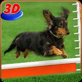 Dog Stunt Show Simulator 3D