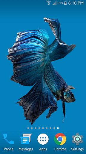 Betta Fish 3D screenshot 5