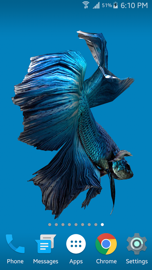 Betta Fish 3D Android Apps On Google Play