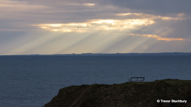Photo: Fife Coast from Seaton Cliffs, Arbroath