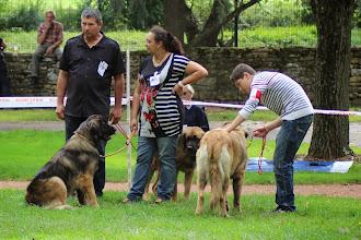 Photo: Famille Ello No Rebat : Indy, Iaka (derrière) et Ivonne de dos