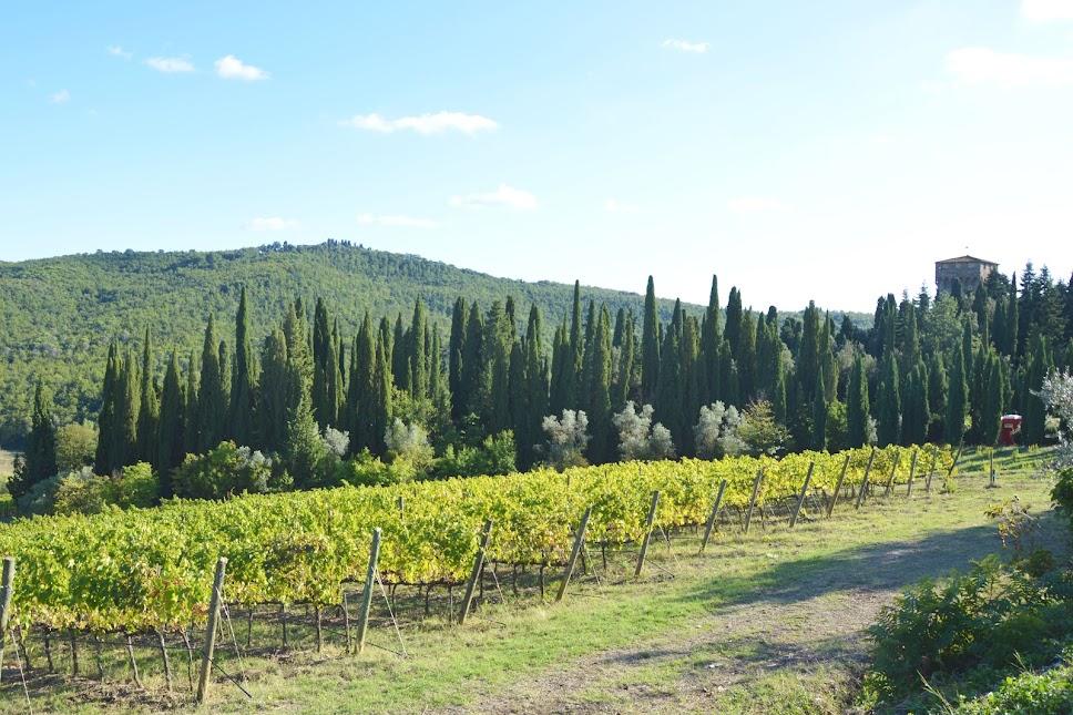 road-trip-door-de-chianti-wijnstreek