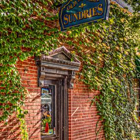 Sundries by Darin Williams - City,  Street & Park  Markets & Shops ( sign, shop, store, brick, vine, ivy )