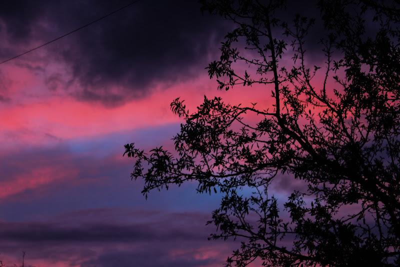 Un tramonto diverso. di floriana27
