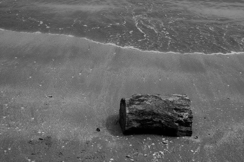 -Black and white- di Allie