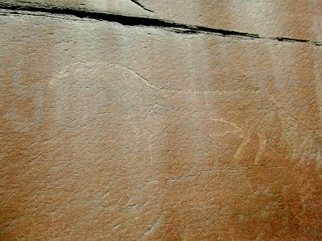 Large, unfinished horse petroglyph