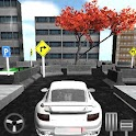 Car Parking Race Speed 3D icon