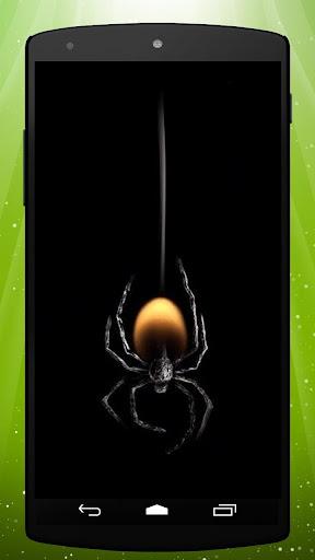 Deadly Spider Live Wallpaper