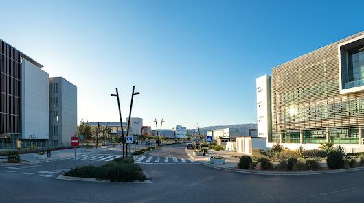 Almería abrirá su Escuela Internacional de Agronegocios