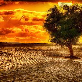 by Abdul Rehman - Landscapes Sunsets & Sunrises (  )