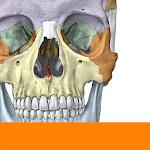 Sobotta Anatomy 2.10.5 (Unlocked)
