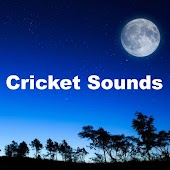 Cricket Sounds for Relaxation