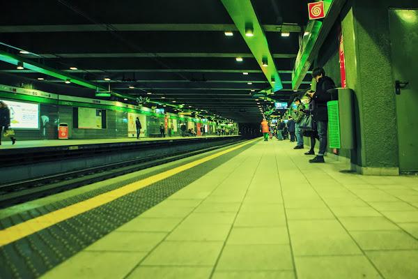 M, Linea Verde di FrancescoPaolo