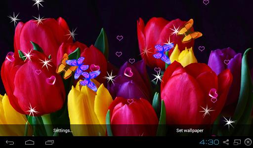 Tulip 3D LWP