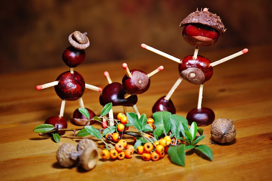 Chestnut family by Nicu Buculei - Artistic Objects Still Life ( chestnut, still life, toys, handmade )
