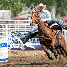 All Out by Bob Grandpre - Sports & Fitness Rodeo/Bull Riding ( barrel racing, female, horse, rodeo, horse rider, south dakota, river regional rodeo )