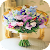 Flowers Images \