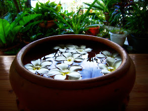 Photo: Flower Bowl #FloralFriday curated by +Tamara Pruessner :- A little something my Thai wife put together one morning to greet visitors to our house high up in the mountains of Omkoi, Thailand.  Photography by Justin Hill ©