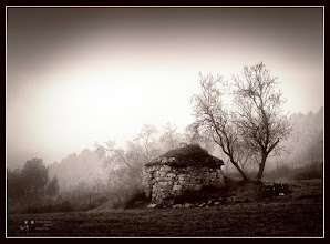 Photo: for #MonochromeMonday (curated by +Siddharth Pandit) and #PlusPhotoExtract #FineArtPls