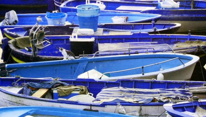 Pozzuoli Blu di blujames