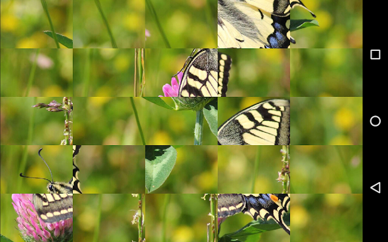 android Tile Puzzles · Butterflies Screenshot 5