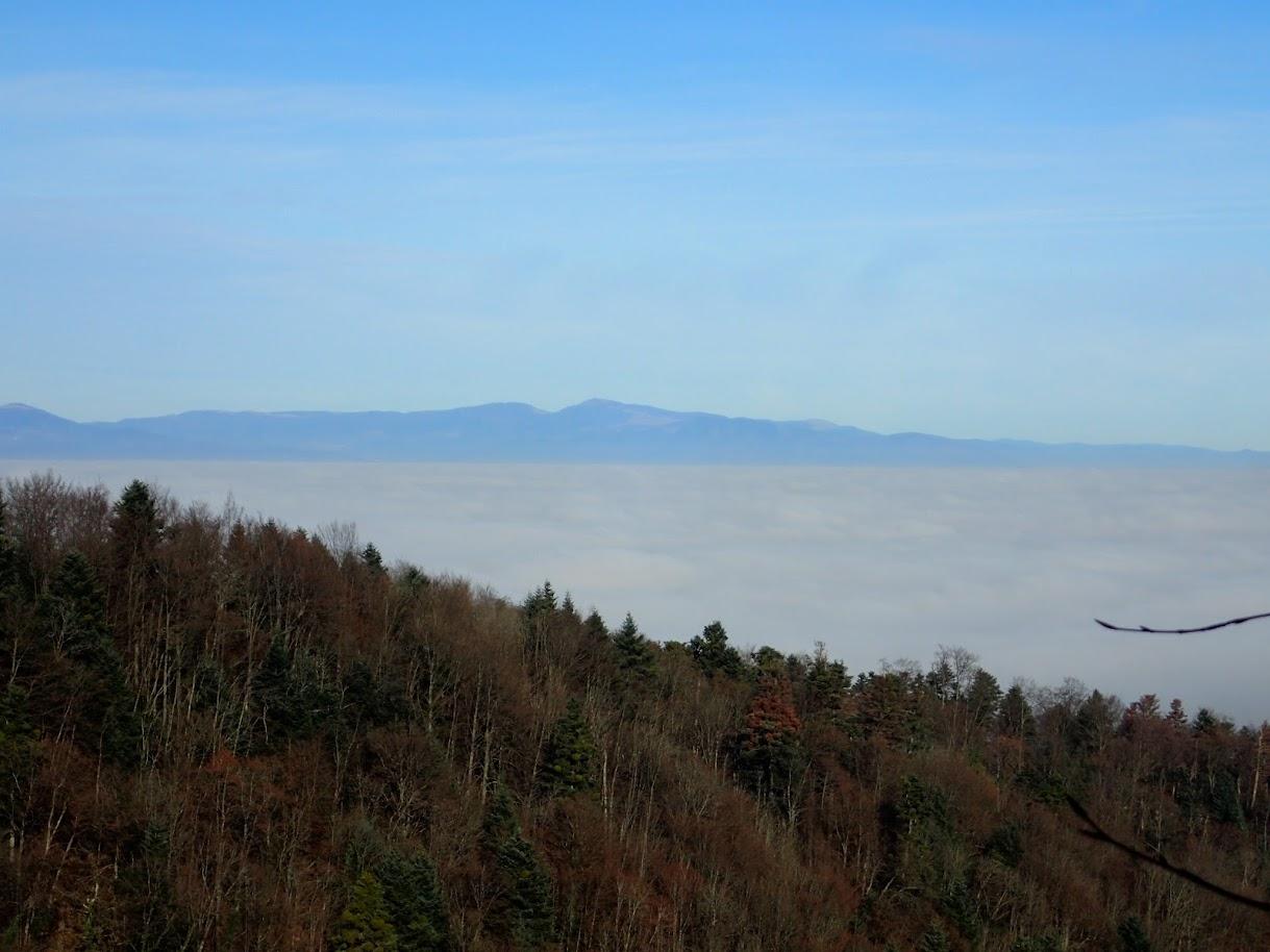 En bas dans la vallée, le brouillard épais