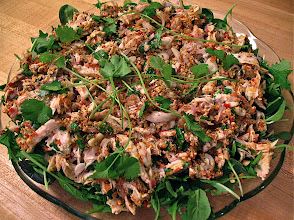 Photo: spicy Thai-style chicken salad garnished with cilantro