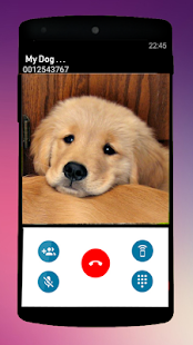 Call From Puppy Joke - náhled
