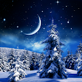Winter Night Wallpaper APK