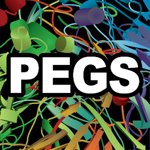PEGS Summit 2016