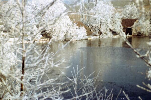 Galaverna sul lago ghiacciato di jovi55