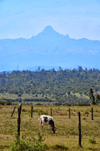 Photo: Mt Batian