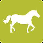 Equidays 2015 icon
