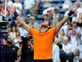 Juan Martin Del Potro herleeft na plek in halve finales op US Open