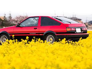 カローラレビン AE86 1986のカスタム事例画像 YamaChanさんの2019年05月02日21:30の投稿