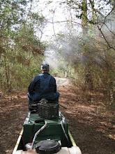 Photo: Bob Sanford making smoke and light passing through the trees making patterns in the smoke.