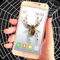 Spider filter prank icon
