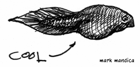 Photo: trying to draw tadpoles like JB