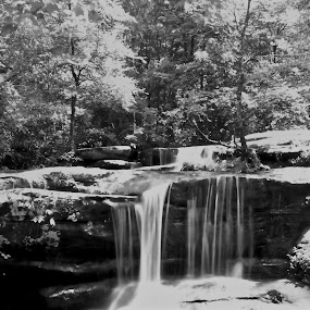 Just Flow by Ty Shults - Black & White Landscapes ( water, black and white, waterfall, white, trees, forest, flow, landscape, rocks, black )
