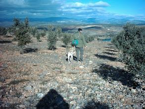 Photo: Dogs hunting Truffles