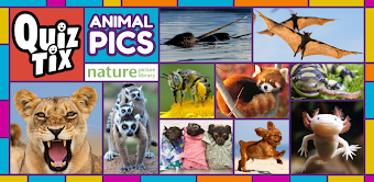 QuizTix: Animal Pics Trivia - Nature Image Library