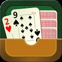 29 Card Game Plus icon