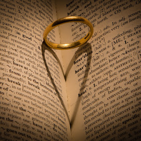 infidelity by Lester Woodward - Artistic Objects Jewelry ( ring, shadow, book, love. heart, infidelity )