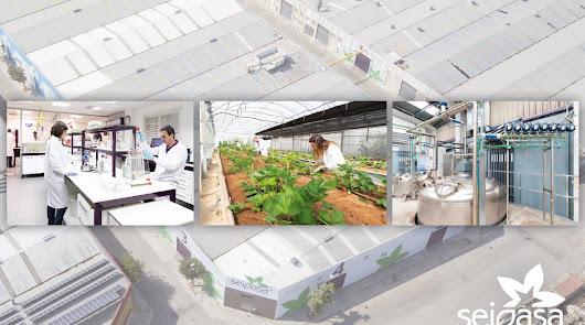 Seipasa diseña su futuro con innovación, tecnología y registros fitosanitarios